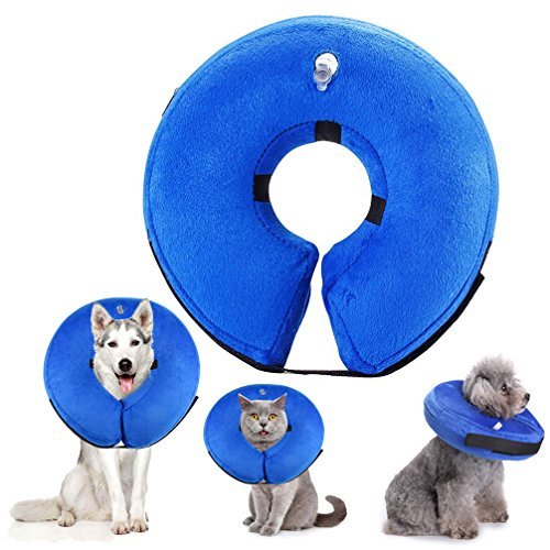 SMALLLEE_LUCKY_STORE MQ00016-blue-L Inflatable Dog Recovery Collar, Blue, Large
