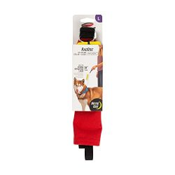 Nite Ize Raddog All-in-One Collar + Leash Combo, Dog Collar with Built-in Retractable Leash, Red, Large 16″-20″
