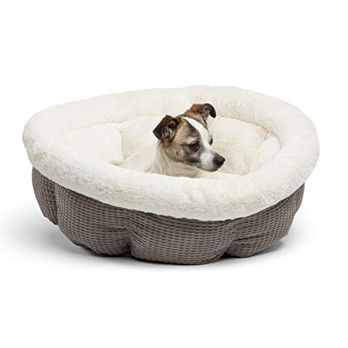 Best Friends by Sheri Jumbo Cup in Mason Dog Bed/Cat Bed, Gray, Gray, Jumbo