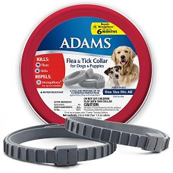 Adams 100526751 Flea and Tick Collar for Dogs and Puppies, One Size (Pack of 2)