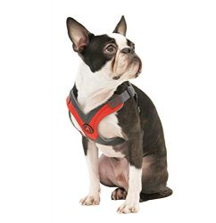 Gooby – Trekking Harness, Small Dog Fleece Lined Harness with Memory Foam Padding, Red, Small