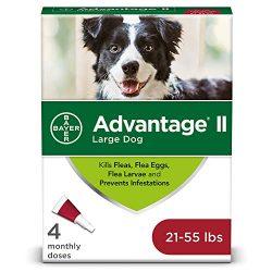 Flea and Lice Treatment for Dogs, 21 – 55 lb, 4 doses, Advantage II
