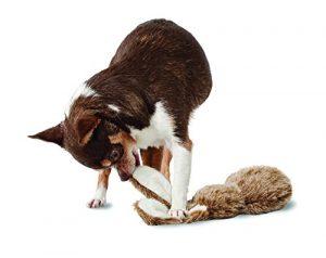 PetSafe Pogo Plush Toys – Durable Squeaker Dog Toy Without Stuffing