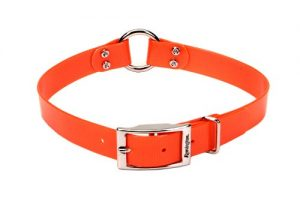 Remington Orange 1-Inch by 18-Inch Waterproof Dog Collar