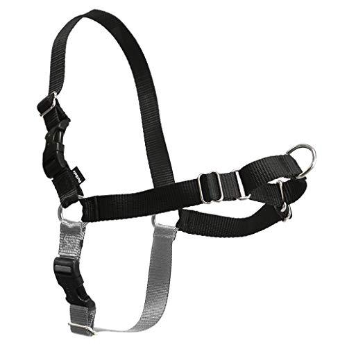 Easy Walk PetSafe Harness Black/Silver, Size: Petite