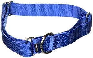 PetSafe Martingale Collar, 1″ Large, Royal Blue