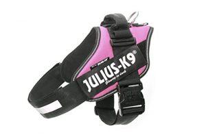 Julius-K9, 16IDC-PN-2, IDC Powerharness, Dog Harness, Size: 2, Pink