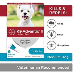 Flea and tick prevention for dogs, dog flea and tick treatment, 6 doses for dogs 11-20 lbs, K9 Advantix II