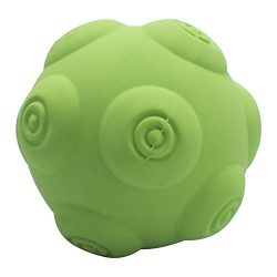 Petper CW-0116 Dog Squeaky Ball Toy Soft Latex, Puppy Interactive Toy for Playing & Training, Green