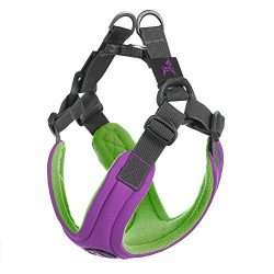 Gooby – Escape Free Memory Foam Harness, Small Dog Step-in Harness for Dogs That Like to Escape Their Harness, Purple, Small