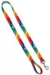 Moose Pet Wear Deluxe Dog Leash – Patterned Heavy Duty Pet Leashes, Made in the USA – 3/4 Inch x 6 Feet, Tie-Dye