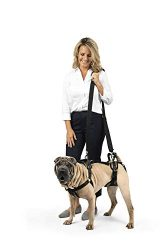 Solvit Pet Lifting Aid for Full Front and Back, Medium