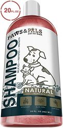 Natural Oatmeal Dog-Shampoo and Conditioner – 20oz Medicated Clinical Vet Formula Wash for All Pets Puppy & Cats – Made with Aloe Vera for Relieving Dry Itchy Skin