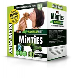Vetiq Minties Dog Dental Bone Treats, Dental Treats For Dogs, Tiny/Small, 32Oz