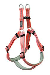 Terrain D.O.G. Reflective Neoprene Lined Harness