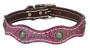 Weaver Pet Vintage Paisley Collar