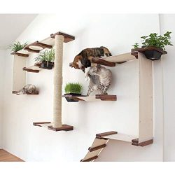 CatastrophiCreations Cat Mod Garden Complex Handcrafted Wall Mounted Cat Tree Shelves with Planter for Cat Grass, English Chestnut/Natural, One Size