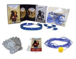 Don Sullivan Perfect Dog Max Results Pet Training Package, Large