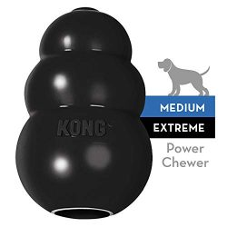 KONG – Extreme Dog Toy – Toughest Natural Rubber, Black – Fun to Chew, Chase and Fetch – For Medium Dogs