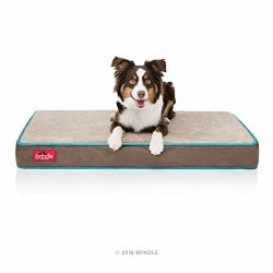 Brindle 4″ Solid Memory Foam Orthopedic Dog Bed with Removable Waterproof Velour Cover, Medium 34″ x 22″, Mocha Blue