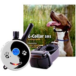 Educator Zen-300-TV Bundle: Zen Mini 1/2 Mile E-Collar Remote Dog Training Collar Plus 101 Off-Leash 4 Sessions Dog Training DVD