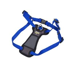 Walk Right! Front-Connect Padded Dog Harness, Small, Blue