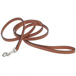 Circle T Tan Oak Leather Dog Leash – 6 ft. with a Width of 3/8 in.