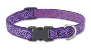LupinePet Originals 3/4″ Jelly Roll 13-22″ Adjustable Collar for Medium and Larger Dogs