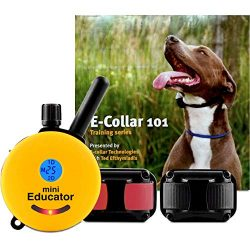 Educator ET-302-TV Bundle: Two Dog Mini 1/2 Mile E-Collar Remote Dog Training Collar Plus 101 Off-Leash 4 Sessions Dog Training DVD