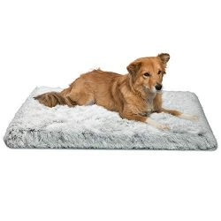 Best Friends by Sheri Nap Mat with CertiPUR Orthopedic High-Density Foam Shag 27x36x2.5, Zippered Shell, Machine Washable (Frost)