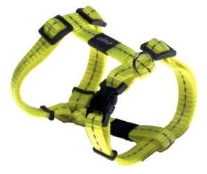 Reflective Adjustable H Harness for Small Dogs; matching collar and leash available, Yellow