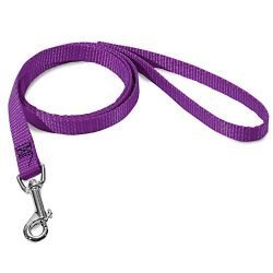 3/8in x 6ft Lead Dog Leash Purple By Majestic Pet Products