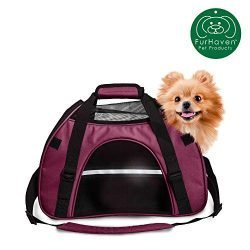 Furhaven Pet Bag | Water-Resistant Multipurpose Travel Tote Bag w/ Weather Guard for Dogs & Cats, Raspberry, Large
