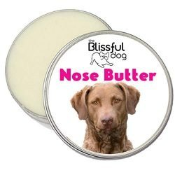 The Blissful Dog Chesapeake Bay Retriever Unscented Nose Butter, 1-Ounce