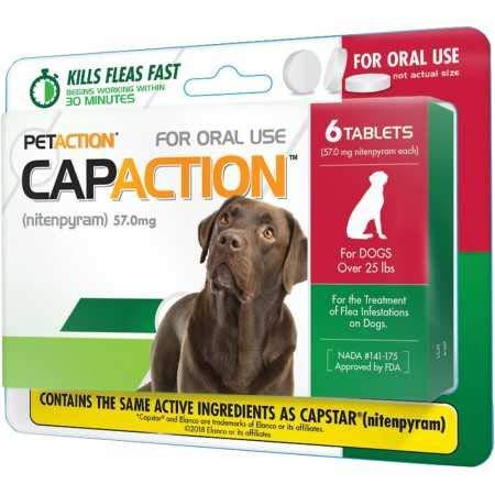 CapAction Large Dog 6ct