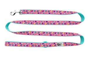 RC Pets 1″ x 6′ Dog Leash, Memphis