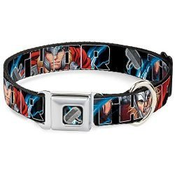 Dog Collar Seatbelt Buckle Thor Poses Hammer 15 to 26 Inches 1.0 Inch Wide