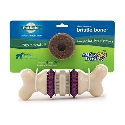 PetSafe Busy Buddy Bristle Bone Chew Toy for Dogs – Strong Chewers – Helps Clean Teeth – Large