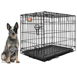 Animal Planet Large Dog Crate – 36 inch Folding Metal Pet Crate with Removable Tray