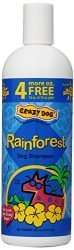 Crazy Dog Rain Forest Shampoo for Dogs, 16-Ounce