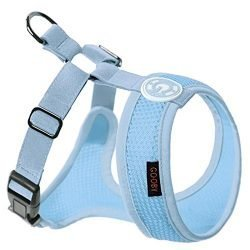 Gooby – Freedom Harness II, Choke Free Mesh Harness for Small Dogs with Microsuede Straps, Sky Blue, X-Large