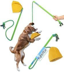 Pet Qwerks Flipstick Chase & Tug Interactive Dog Flirt Pole – Dog Teaser Wand, Dangling Tether Dog Toy, Avoids Boredom, Keeps Dogs Active, Also Great Toy for Two Dogs to Play Together