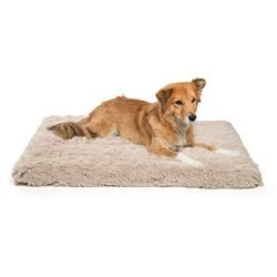 Best Friends by Sheri Orthopedic Dog Bed – Vegan Faux Fur Cushion Supports Joints, Soothes Your Pet, Improves Sleep – Self-Warming w/Zippered Cover, Machine Washable – 27×36 in Taupe
