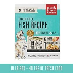 The Honest Kitchen Human Grade Dehydrated Grain Free Fish Dog Food 10 lb – Zeal