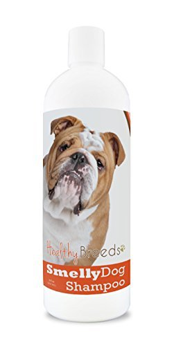 Healthy Breeds Smelly Dog Deodorizing Shampoo & Conditioner with Baking Soda for Bulldog – Over 200 Breeds – 8 oz – Hypoallergenic for Sensitive Skin
